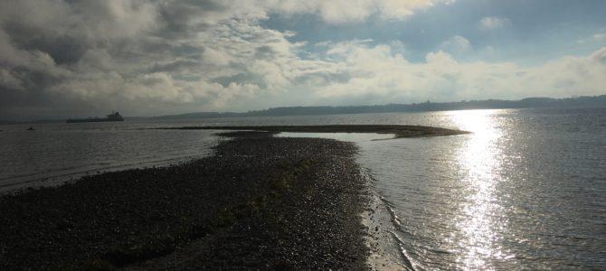 45 mio. kroner puster liv i syv nye natur- og kystprojekter